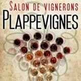 Salon à Plappevignes